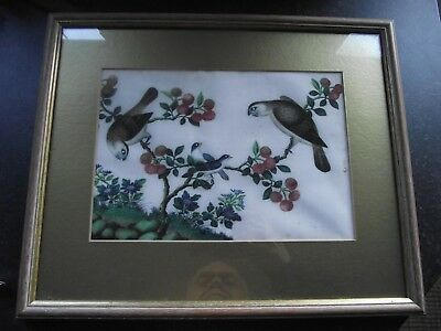 Antique CHINESE Painting of Birds on Pith  Rice Paper