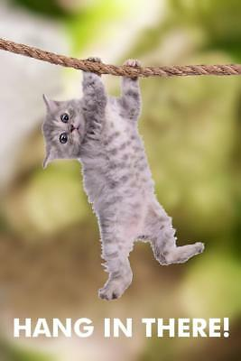 Hang In There! Cat Retro Motivational Poster 24x36 inch