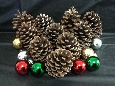 Pine Cones 10 Wrapped n Ready Medium Natural Pinecones Christmas Decorations