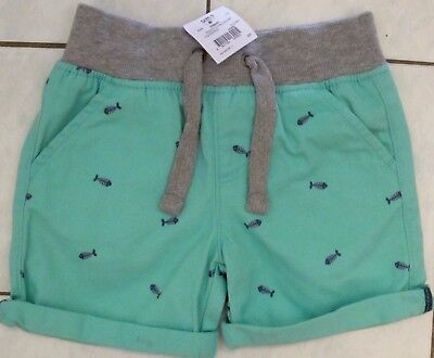 green CHINO shorts  for boys with fish on them size 1 brand new Brand New