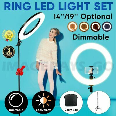 "19"" 14""  5500K Dimmable Diva LED Ring Light with Diffuser Stand Make Up Studio"