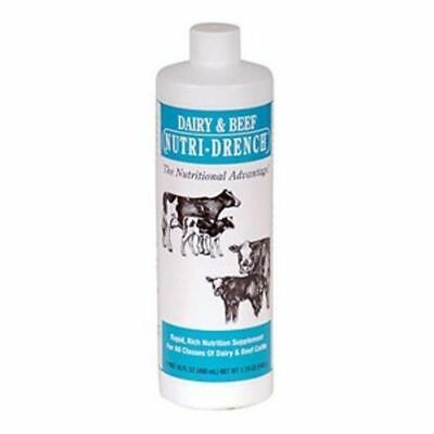 Beef Dairy Cow Nutri Drench Energy Nutri-Drench Weak Stressed Calves 16oz  SALE