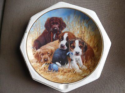 "Limited Edition Franklin Mint Plate ""puppy Pause"" By James Killen"