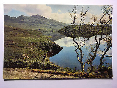 Loch Assynt and Quinag, Lochinver, Sutherland - Antique Postcard - Unposted