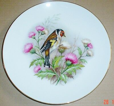 Royal Worcester Bird Plate 9 1/4 Inch #2