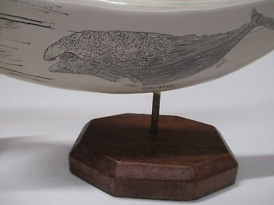1 Cook Company Scrimshaw Resin Sculpture Grey Whale w/ tags