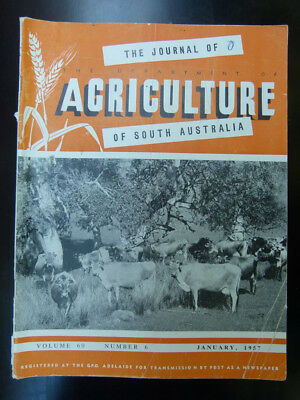 Old South Australian Agriculture Farming Journal January 1957