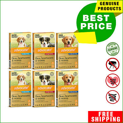 ADVOCATE Flea Heartworm Worm treatment for Dogs 12 Pipettes by Bayer
