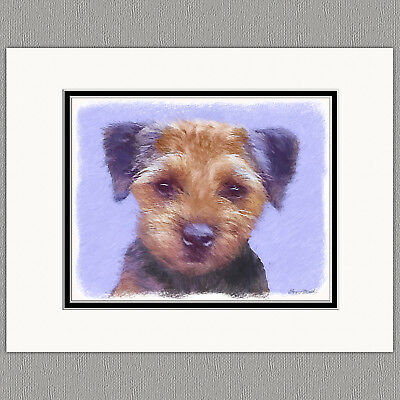Border Terrier Dog Original Art Print 8x10 Matted to 11x14