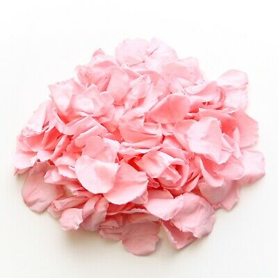 Baby pink rose petals for wedding confetti decoration, preserved