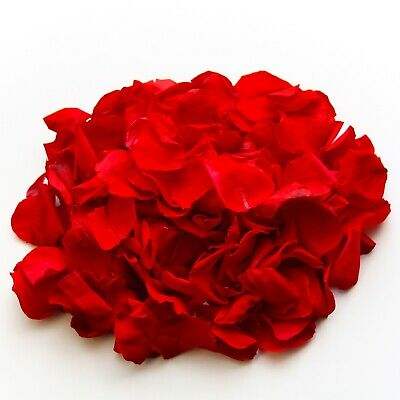 Freeze dried, red rose petals for wedding confetti decoration