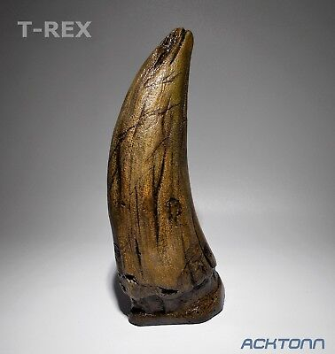 Trex Fossil Lifesize Tooth Hand Made Prefinished Original Reproduction ACKTONN1