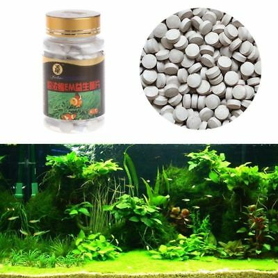 80g One Bottle Nitrifying Bacteria For Fresh Water And Marine Water Fish Tank