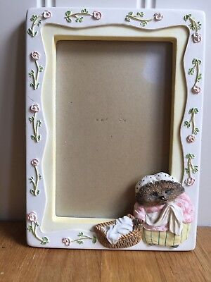The World Of Beatrix Potter - Mrs Tiggy-Winkle - Ceramic Picture Frame