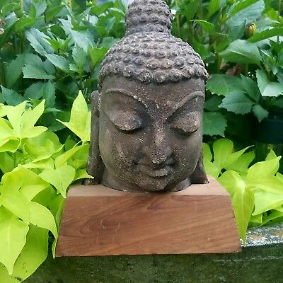 VERY RARE & IMPORTANT Ancient Stucco Buddha Head Fragment, EX-Private Collection