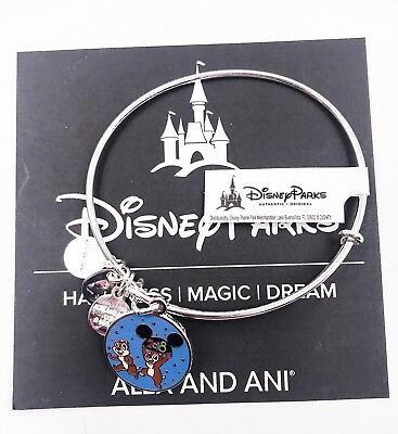 Disney Parks Alex and Ani Chip Dale 2018 Silver Charm Bangle Bracelet