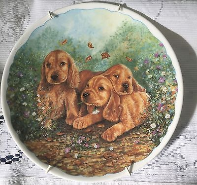 St. Andrews vintage hand made & hand decorated fine china dog plate AND hanger