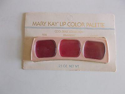Vintage Mary Kay Lip Color Palette Cool Beige Collection Rose Strawberry Garnet