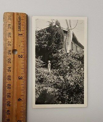Vintage Photograph B&W c1950 boy in garden trees house bushes plants
