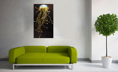Framed Canvas Print Art Irukandji Jelly Fish By Jane Crawford