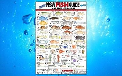 AFN Canvas Fish Guide - NSW (30cm)  - SYD Stock