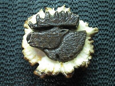Moose Antler Belt Buckle! Vintage! Rare! Hand Carved! 1991! Lacquered! Signed!