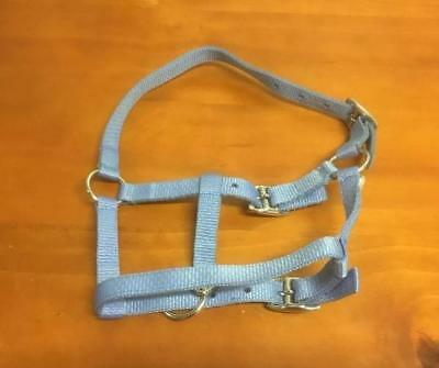 NEW Nylon Halter Blue - Foal Size All Items