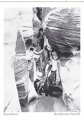 "*Postcard-""Echo Canyon"" (Man on Top of Horse) *Zion National Park, Utah (#256)"
