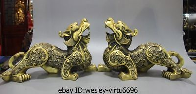 China Brass Copper Fengshui Wealth Money Brave troops Foo Dog Lion Statue Pair