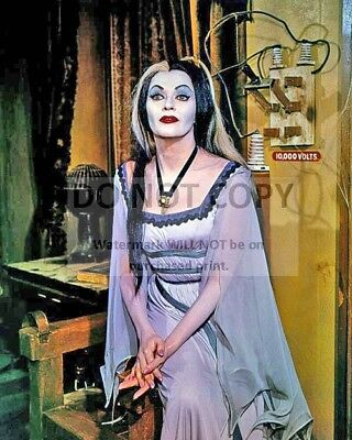 """Yvonne De Carlo As """"Lily"""" In """"The Munsters"""" - 8X10 Publicity Photo (Fb-811)"""
