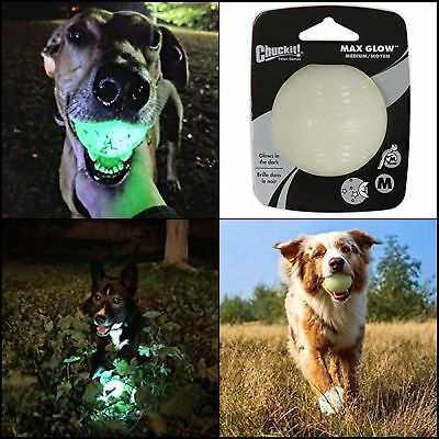 quickly Recharge Glow in the dark Medium size Ball Dog Toy pet fun fetch game