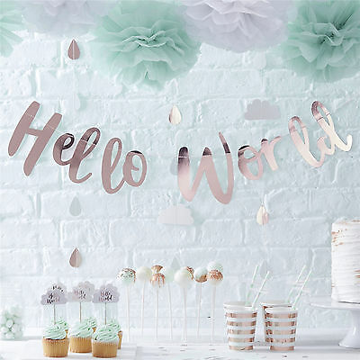 HELLO WORLD BABY SHOWER Party Gender Reveal Tableware Mum to Be Rose Gold Mint