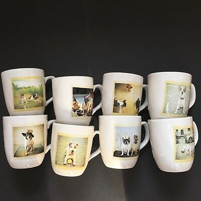 Rae Dunn Artisan Collection Dog Polaroid Picture Mugs 7 Different Styles