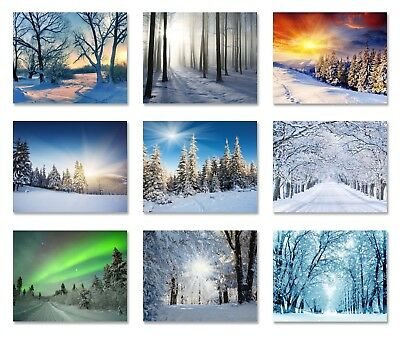 Winter wallpaper Snow Forest sunrise sunset Wall Mural Photo nature woods trees