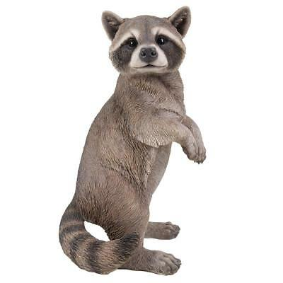 18.8 inches Life Size Raccoon Standing On Hind Legs Statue Sculpture