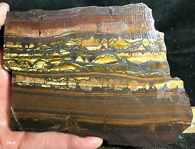 Tiger Iron Rough Slab from Australia!