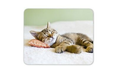 Beautiful Sleeping Kitten Mouse Mat Pad - Cat Cats Mum Gift PC Computer #8265