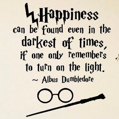 Harry Potter HAPINESS CAN BE... girls boys room wall art vinyl DECAL DECOR