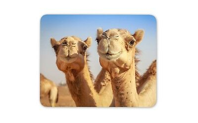Cute Smiling Camels Mouse Mat Pad - Camel Animal Fun Kids Gift PC Computer #8278