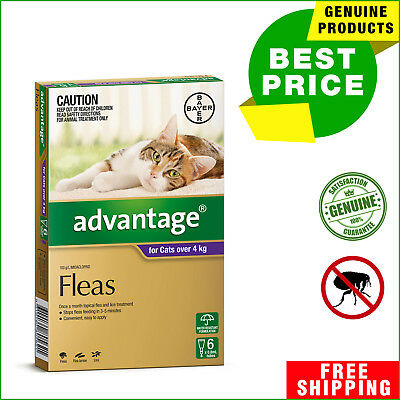 ADVANTAGE Flea Treatment for Cats Over 4 Kg PURPLE 6 Pipettes + 2 Pipettes FREE