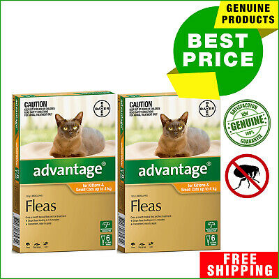 ADVANTAGE Flea Treatment for Cats Upto 4 Kg ORANGE 12 Pipettes + 4 Pipettes FREE