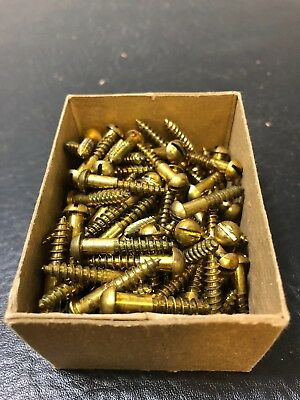 Vtg Atlantic #8 X 1 Inch Round Head BRASS SLOTTED Wood Screws 128 box
