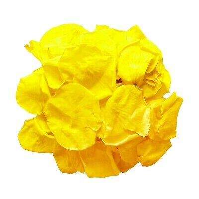 Yellow biodegradable rose petals for wedding confetti / decoration