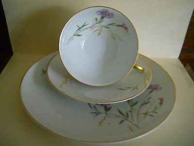 Bavarian Germany Ceramic 3Pce Tea Setting-Hand Painted-Gold Trim-Floral Designs
