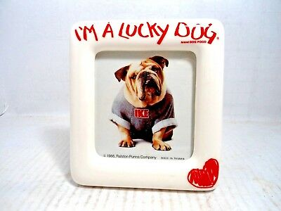 "Bulldog Collectible:"" I'm A Lucky Dog "" Bulldog  In Porcelain? Frame Dated 1988"