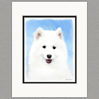 Samoyed Puppy Dog Original Art Print 8x10 Matted to 11x14