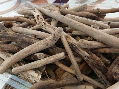 """MIXED Lot of 2"""" to 4"""" 50 Driftwood Pieces DIY Ocean Beach Arts Crafts Jewelry"""