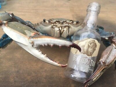 Buffalo trace blue crab taxidermy gift item beach Coral  Reef Gulf Limited Time