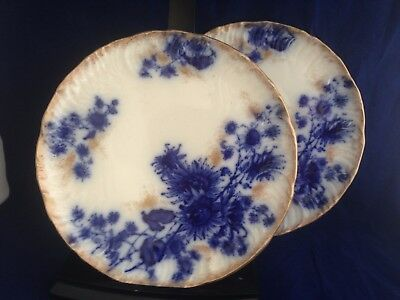 Two antique English Longton Staffordshire flow blue pottery plates with flowers