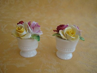 Set of 2 Crown Staffordshire Bone China Flowers in Pots Made in England
